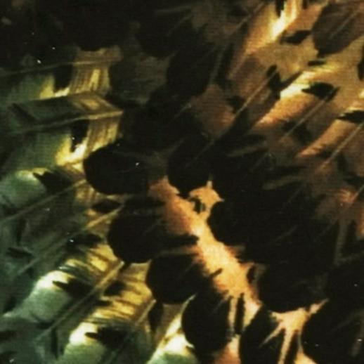 Ice Velvet Pheasant